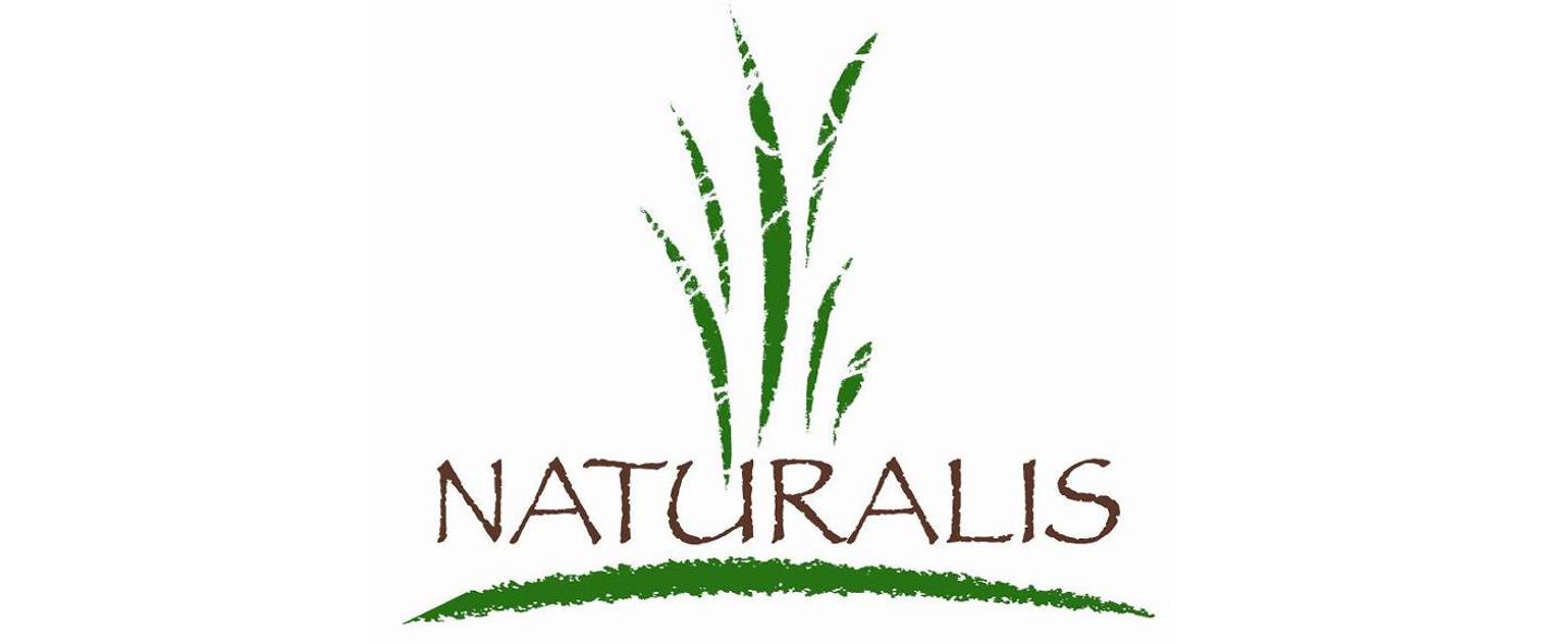 Naturalis - das freundliche Fachgeschäft für Dekoration, Bio Lebensmittel, Edle Unikate aus Holz, Naturschmuck im Herzen von Köthen.